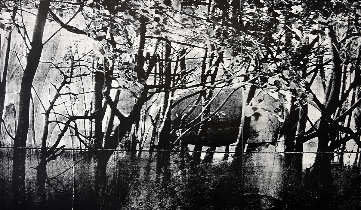 """realism""; woodcut, laserphotography; 70x120cm; 2018; Genaro Strobel"
