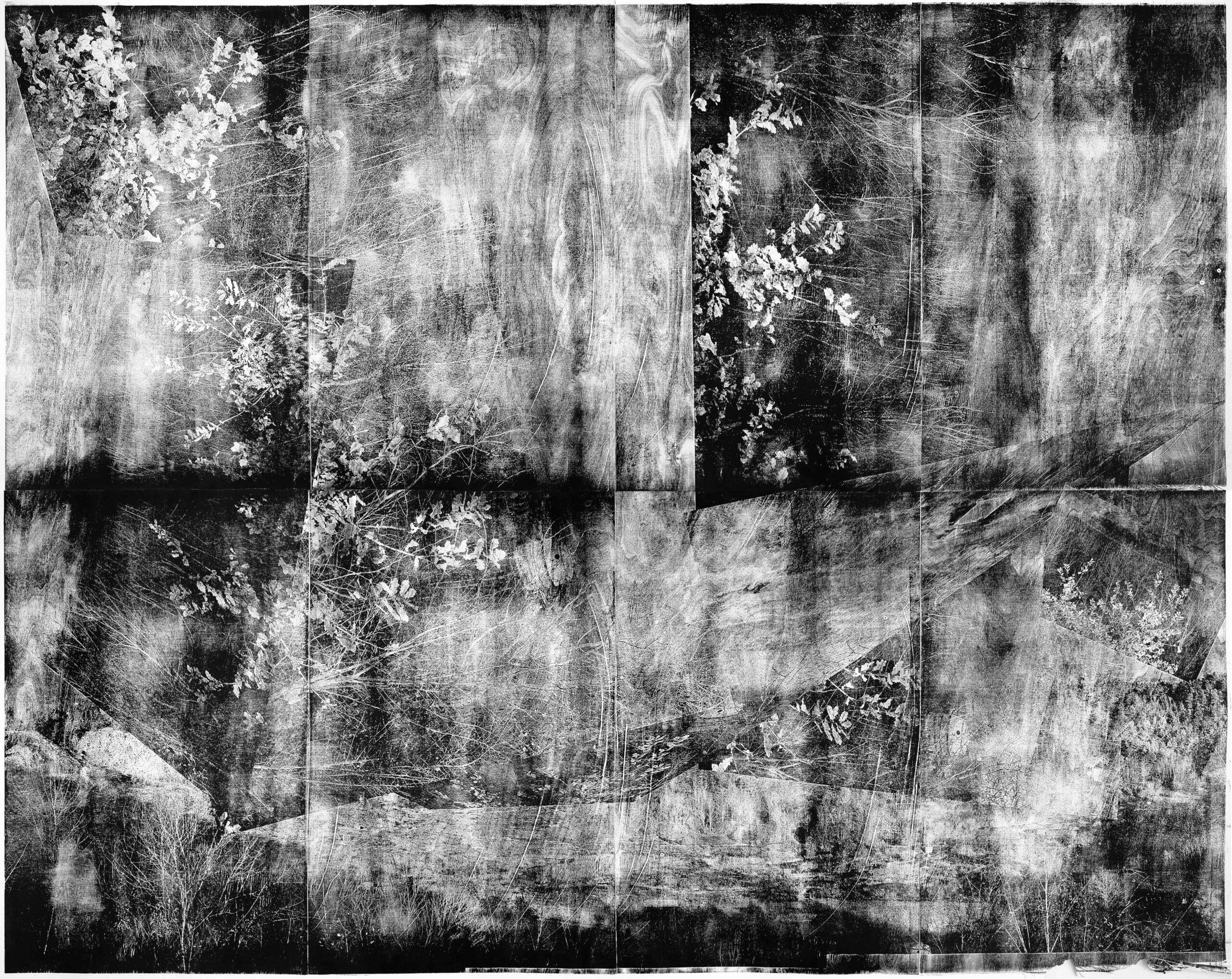 Messel 2, 2020, wood engraving, 200 x 251 cm