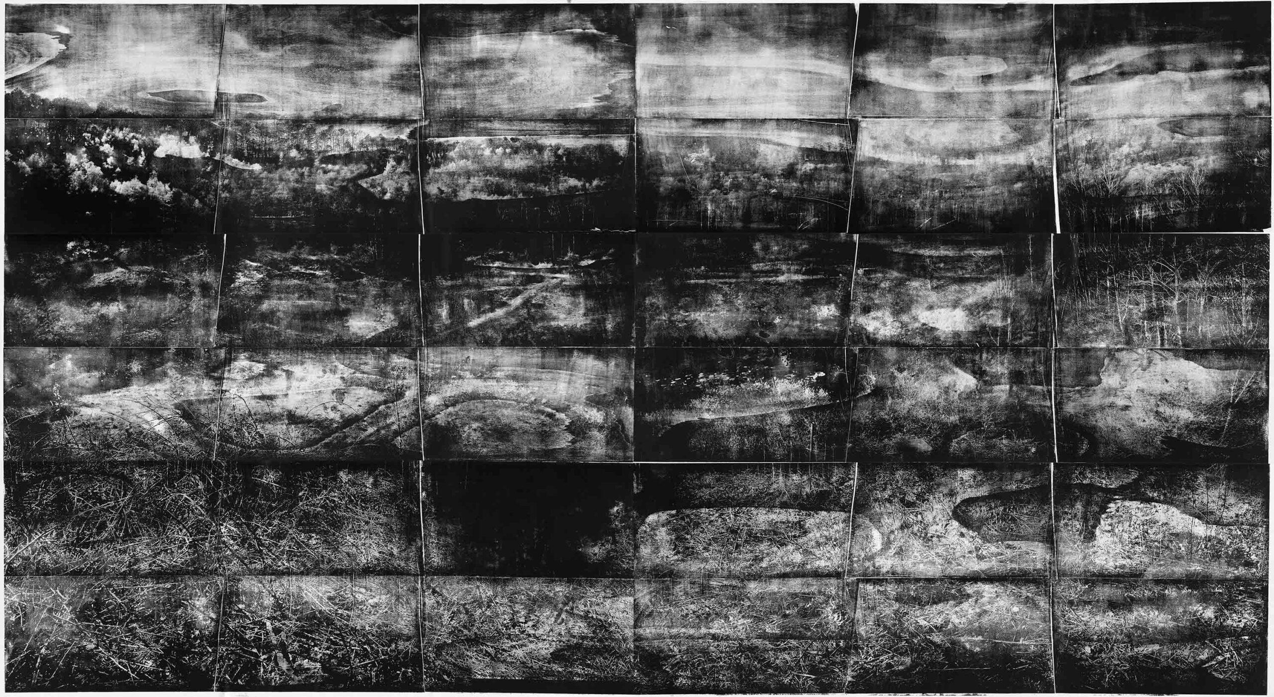 Messel 1 (Tiefschlaf), 2019, wood engraving, 289 x 520,9 cm, Genaro Strobel